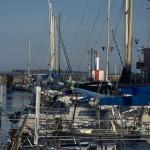 Bateaux ancrés sur la rive de droite du port de Marseillan